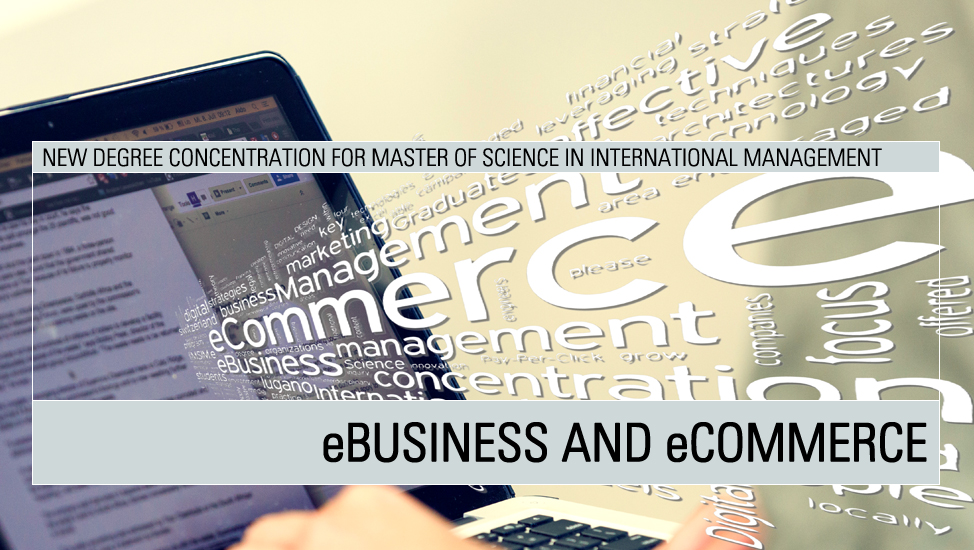 Master of Science in International Management: e-Business and e-Commerce